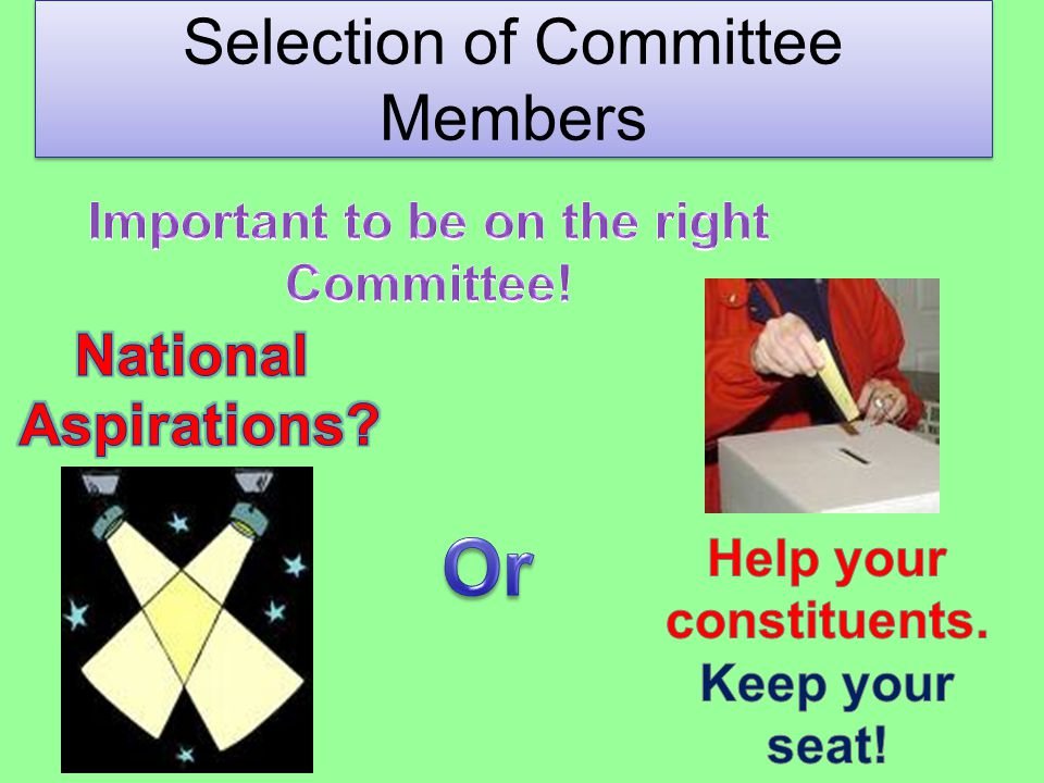 Selection of Committee Members
