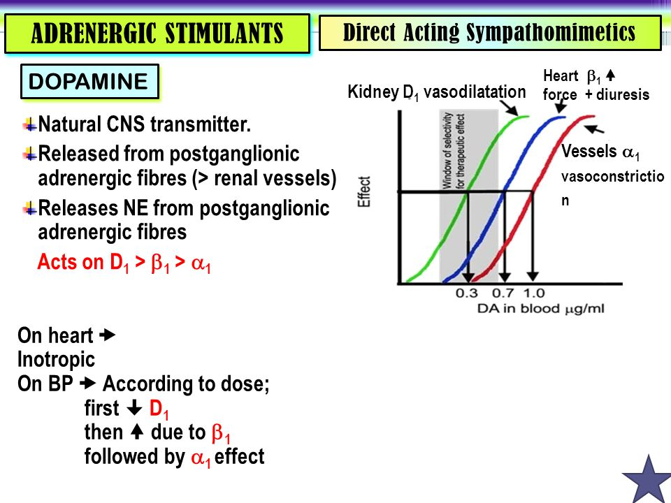 Direct Acting Sympathomimetics DOPAMINE ADRENERGIC STIMULANTS Natural CNS transmitter. Released from postganglionic adrenergic fibres (> renal vessels