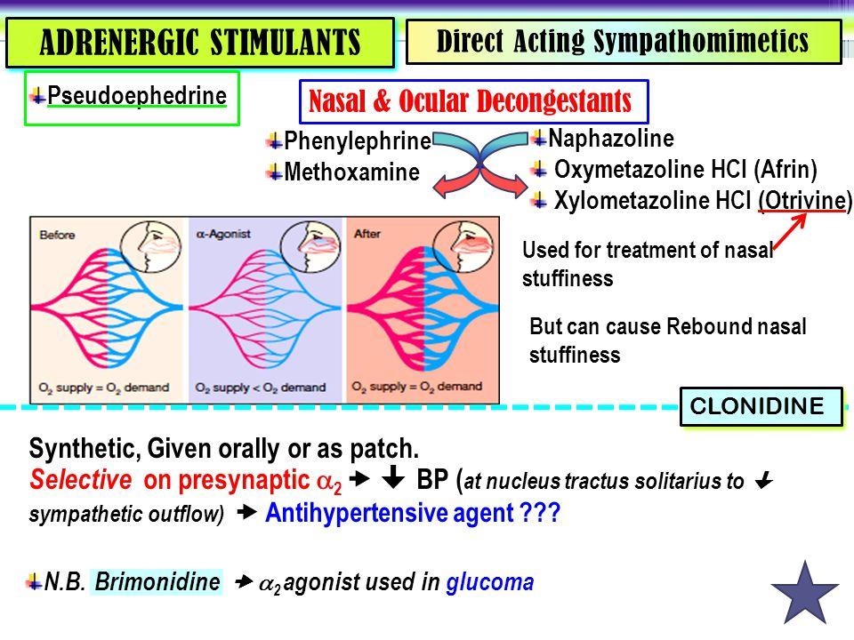 Direct Acting Sympathomimetics ADRENERGIC STIMULANTS Phenylephrine Methoxamine Naphazoline Oxymetazoline HCI (Afrin) Xylometazoline HCI (Otrivine) Nas