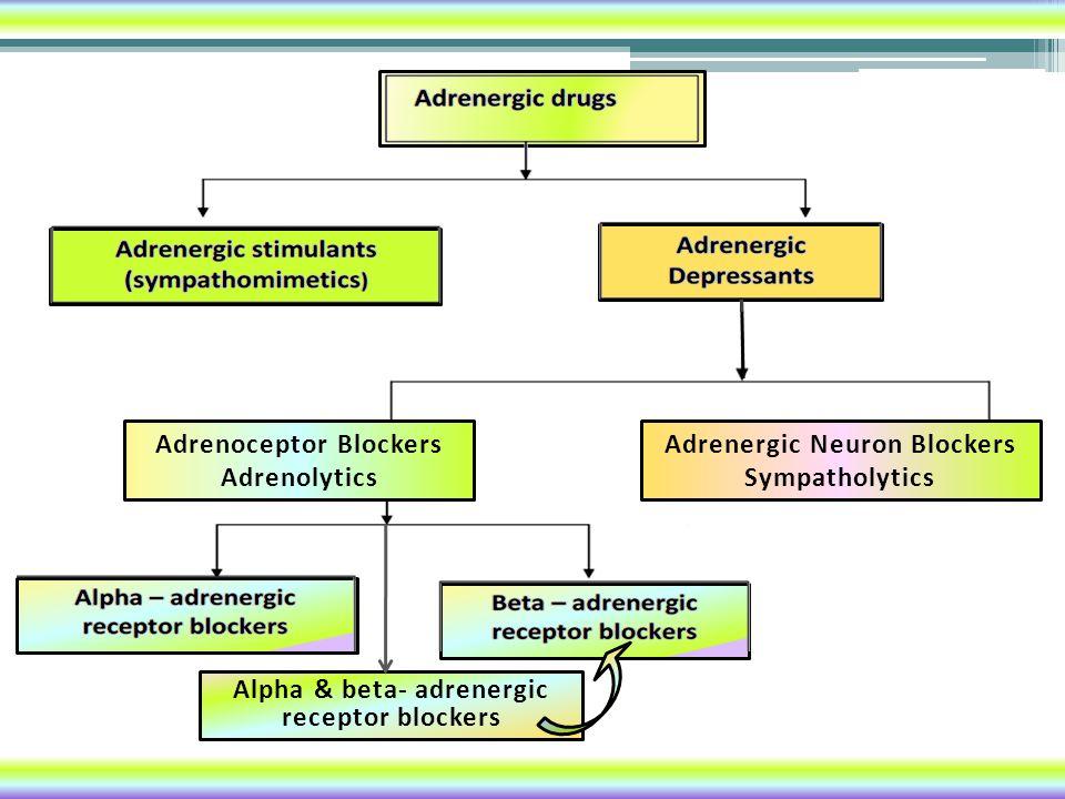 Adrenoceptor Blockers Adrenolytics Adrenergic Neuron Blockers Sympatholytics Alpha & beta- adrenergic receptor blockers