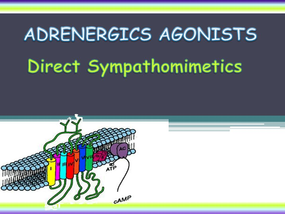 DIRECT Acting Sympathomimetics ADRENALINE Naturally released from adrenal medulla  2 ndry to stress, hunger, fear Inactivated by intestinal enzymes, so given parentral & by inhalation Acts on all ADR;  =/>  Pharmacological actions see physiological actions of the SNS Heart  stimulate properties of heart (    (increase heart rate and contractility BP  (    & (     (    Vascular SMC; constrict skin + peripheral (    dilate coronary+skeletal (    Non vascular SMC; Lung  bronchiodilatation (    GIT   motility (    / contract sphincter (    Bladder   detrusor m.