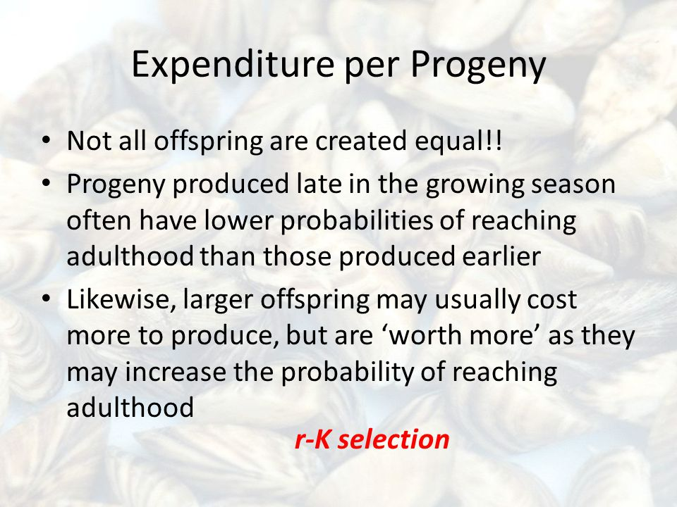 Expenditure per Progeny Not all offspring are created equal!.