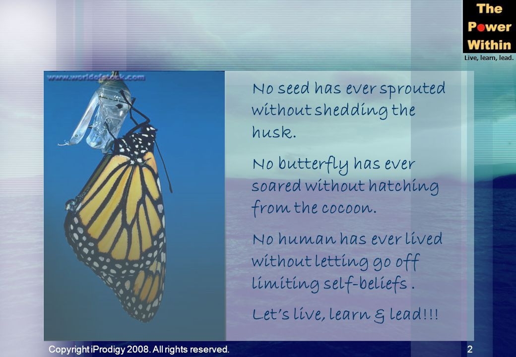 Live, learn, lead. Copyright iProdigy 2008. All rights reserved. 2 No seed has ever sprouted without shedding the husk. No butterfly has ever soared w