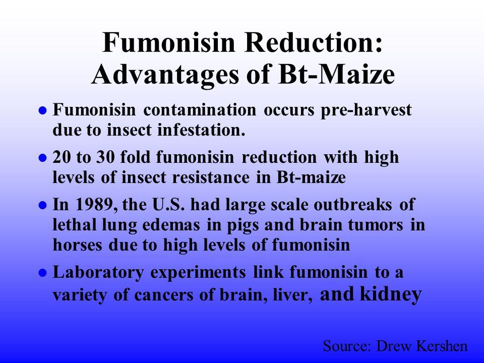 Insect Damage: Bt-Maize v. nonBt-Maize Source: Drew Kershen