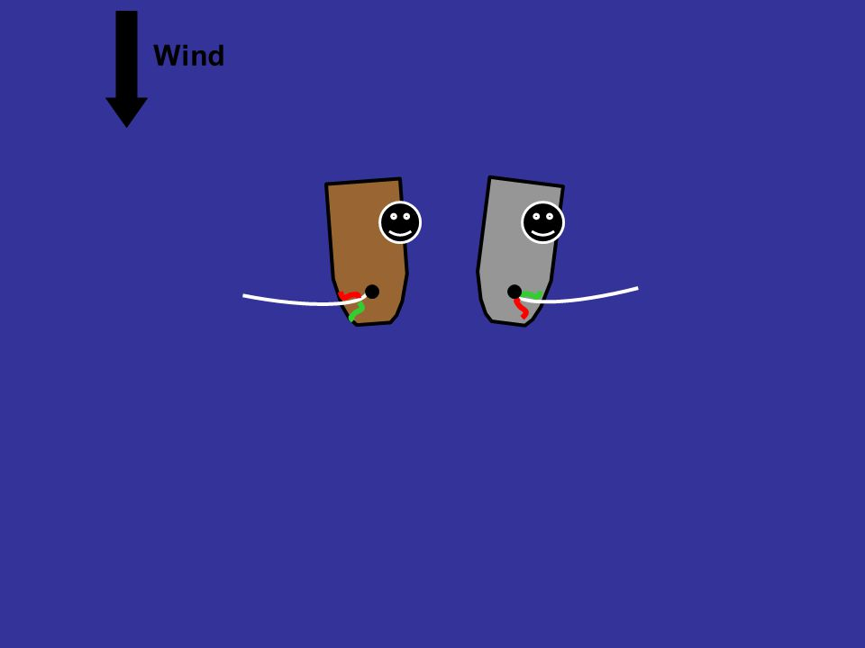 Overlapped, port tack and port tack Wind Grey is sick of keeping clear. He wants to gybe to starboard tack. Animation rule 16.1