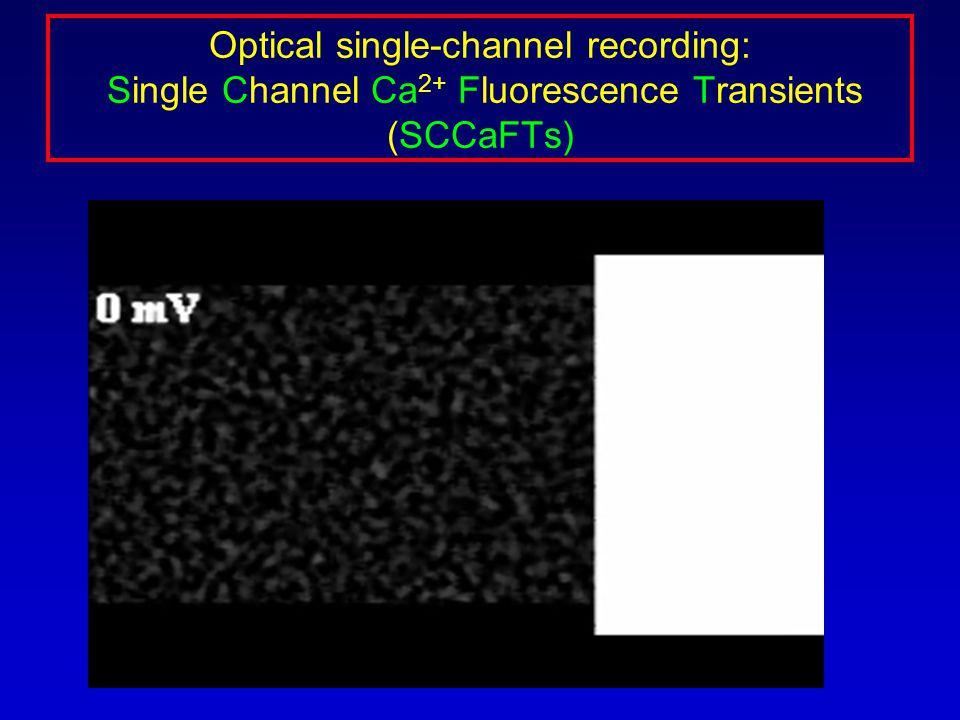 Optical single-channel recording: Single Channel Ca 2+ Fluorescence Transients (SCCaFTs)