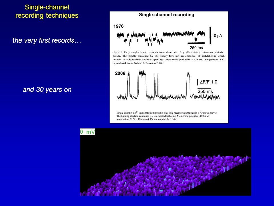 Motivations to develop functional single-channel Ca 2+ imaging 1.