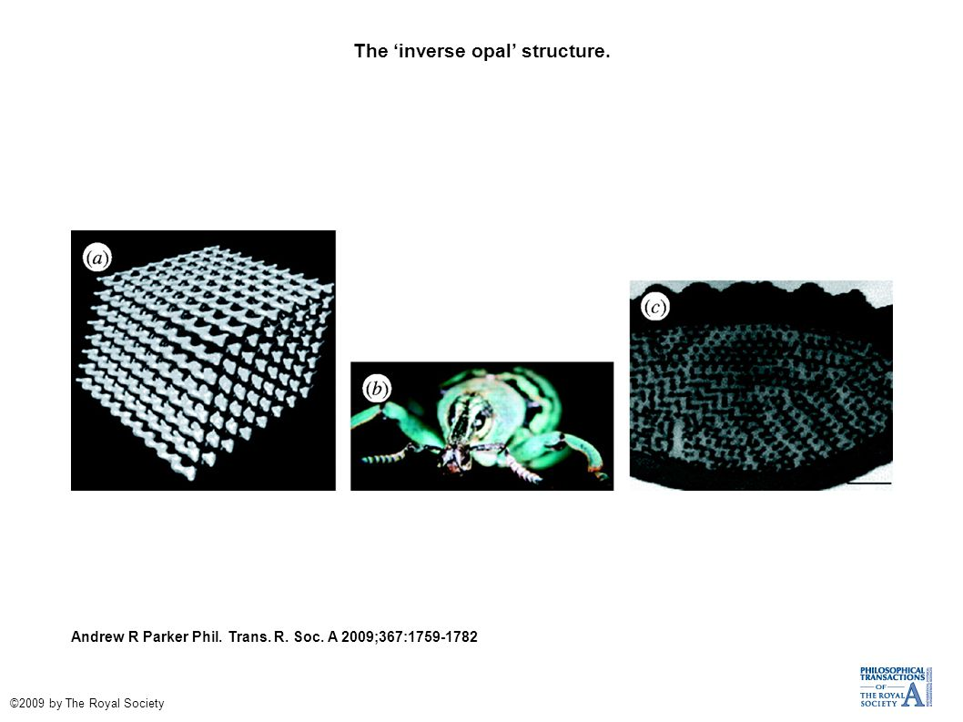 The 'inverse opal' structure. Andrew R Parker Phil. Trans. R. Soc. A 2009;367:1759-1782 ©2009 by The Royal Society