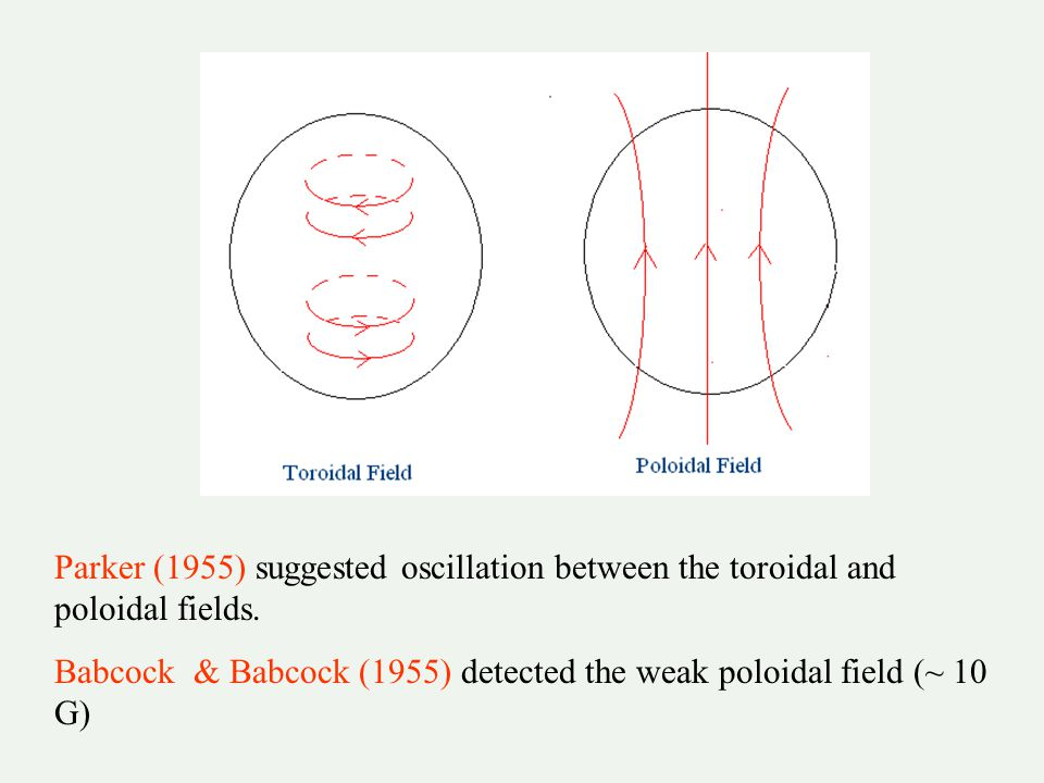 Parker (1955) suggested oscillation between the toroidal and poloidal fields.