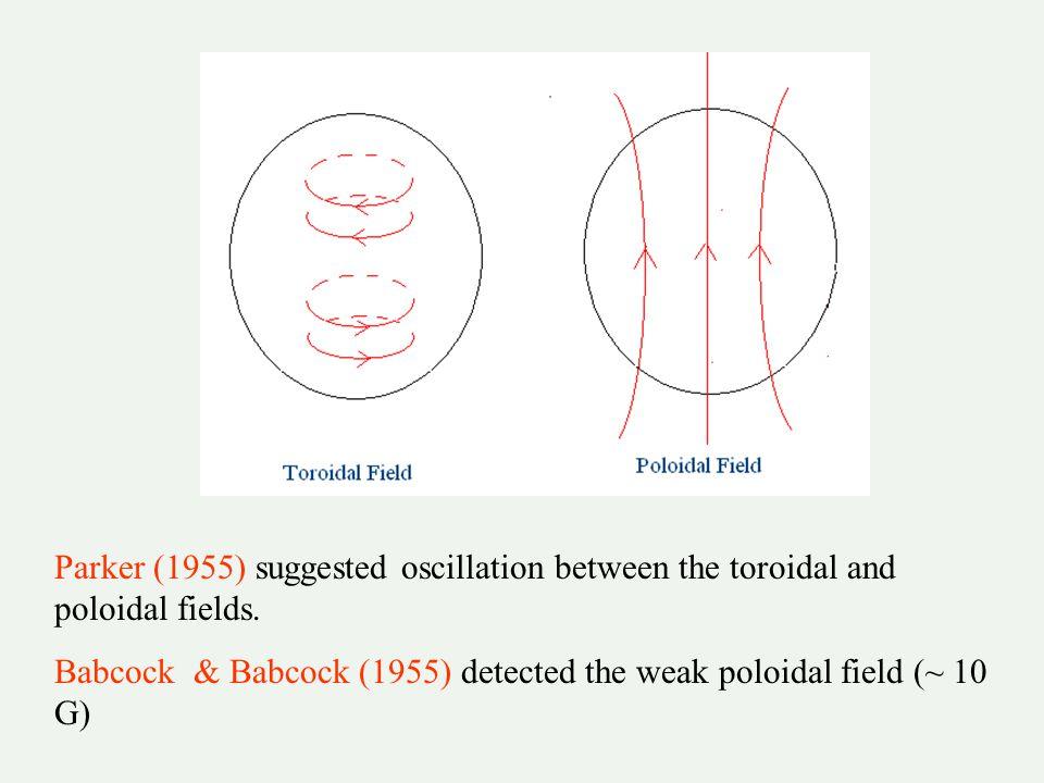Flux transport dynamo in the Sun (Choudhuri, Schussler & Dikpati 1995; Durney 1995) Differential rotation > toroidal field generation Babcock- Leighton process > poloidal field generation Meridional circulation carries toroidal field equatorward & poloidal field poleward