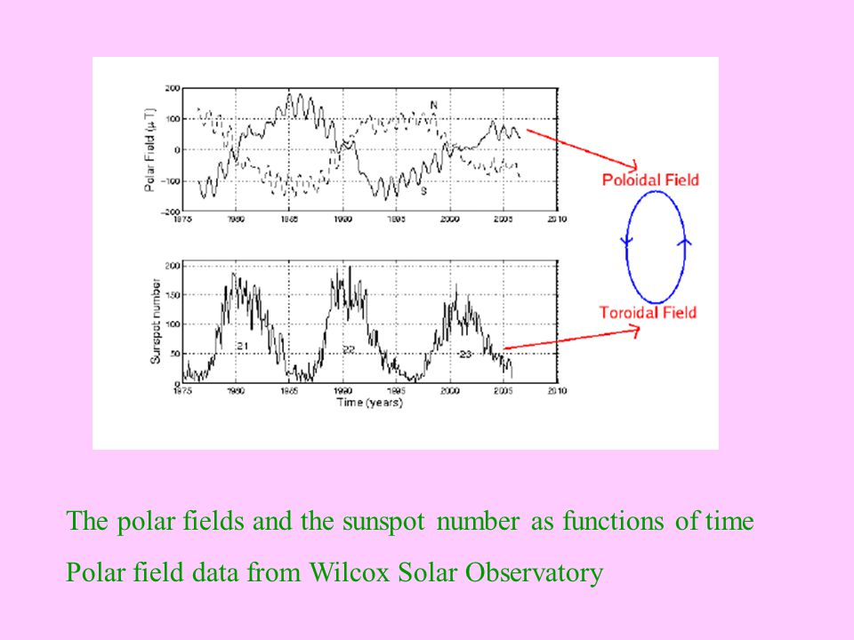 The polar fields and the sunspot number as functions of time Polar field data from Wilcox Solar Observatory
