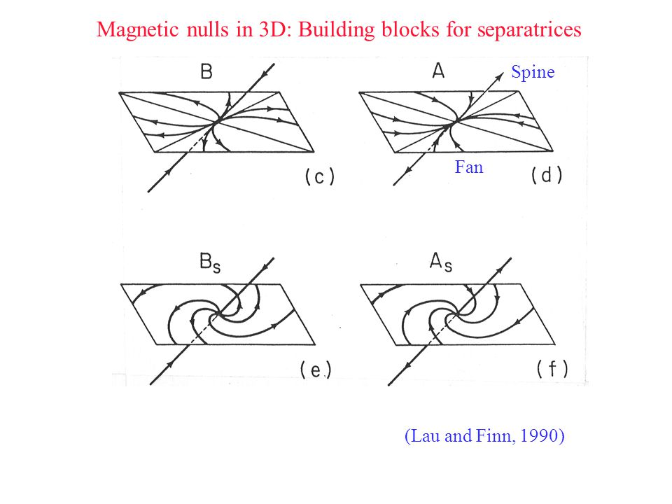 Magnetic nulls in 3D: Building blocks for separatrices Spine Fan (Lau and Finn, 1990)