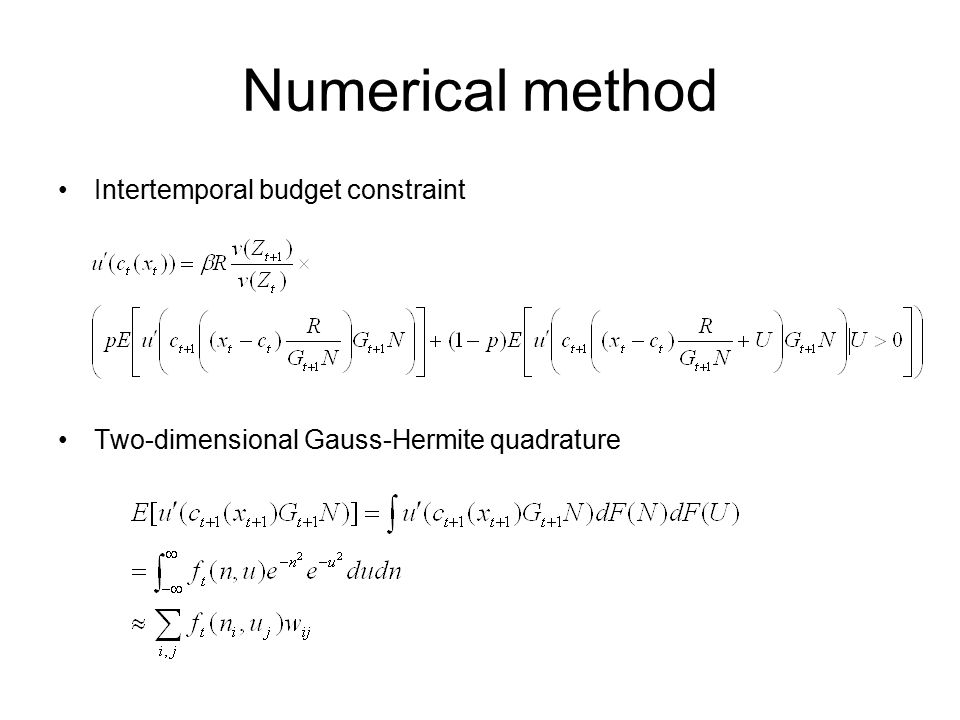 Numerical method Intertemporal budget constraint Two-dimensional Gauss-Hermite quadrature