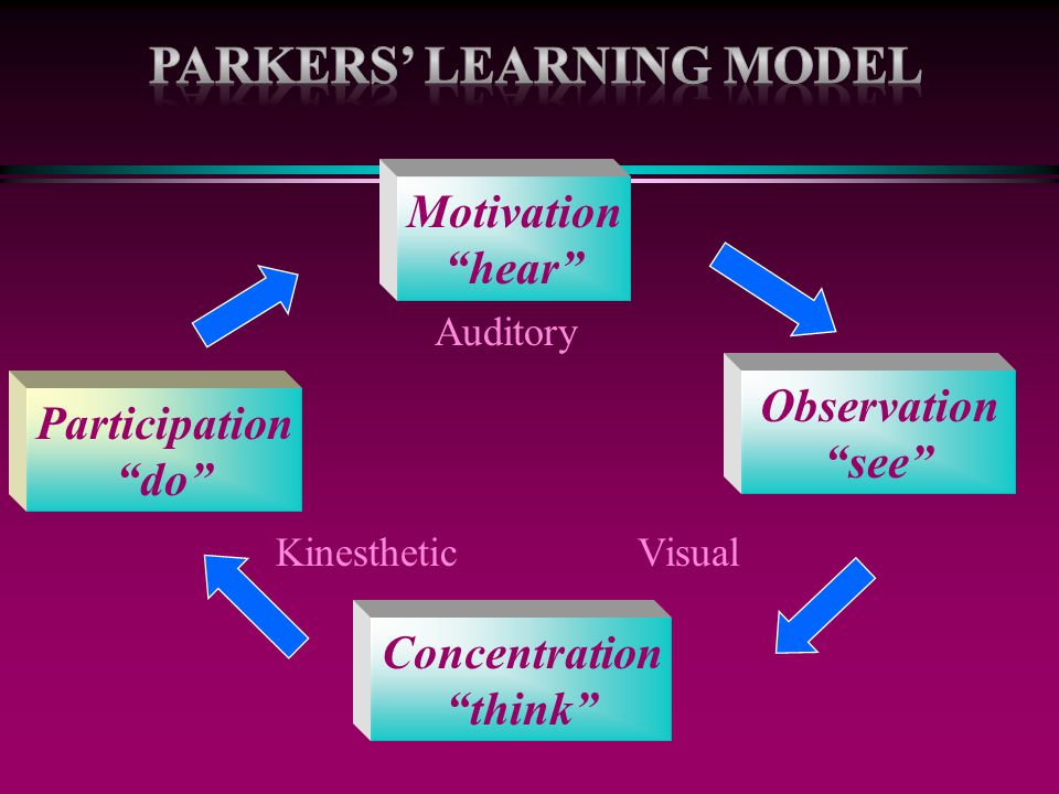 "Observation ""see"" Participation ""do"" Concentration ""think"" Motivation ""hear"" Auditory VisualKinesthetic"