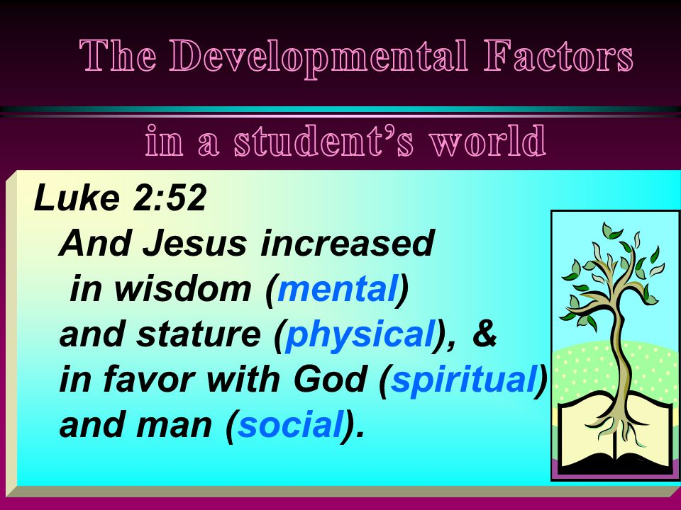 Luke 2:52 And Jesus increased in wisdom (mental) and stature (physical), & in favor with God (spiritual) and man (social).