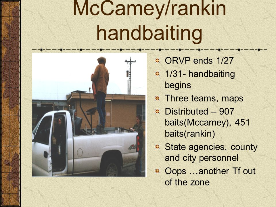 McCamey/rankin handbaiting ORVP ends 1/27 1/31- handbaiting begins Three teams, maps Distributed – 907 baits(Mccamey), 451 baits(rankin) State agencies, county and city personnel Oops …another Tf out of the zone