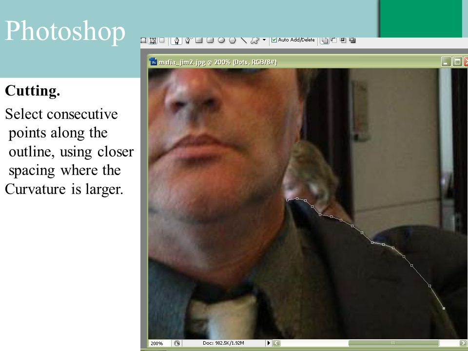 Photoshop Cutting. Select consecutive points along the outline, using closer spacing where the Curvature is larger.