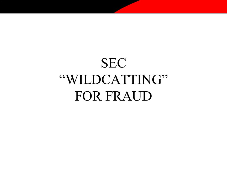 SEC WILDCATTING FOR FRAUD