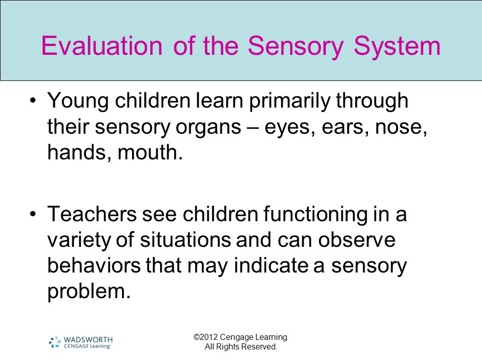 ©2012 Cengage Learning. All Rights Reserved. Evaluation of the Sensory System Young children learn primarily through their sensory organs – eyes, ears