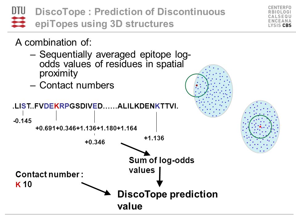 DiscoTope : Prediction of Discontinuous epiTopes using 3D structures A combination of: –Sequentially averaged epitope log- odds values of residues in spatial proximity –Contact numbers - 0.145 +0.346 +1.136 +0.691+0.346+1.136+1.180+1.164 Contact number : K 10 DiscoTope prediction value Sum of log-odds values.LIST..FVDEKRPGSDIVED……ALILKDENKTTVI.
