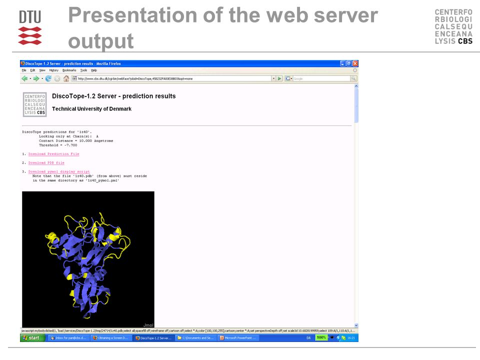 Presentation of the web server output