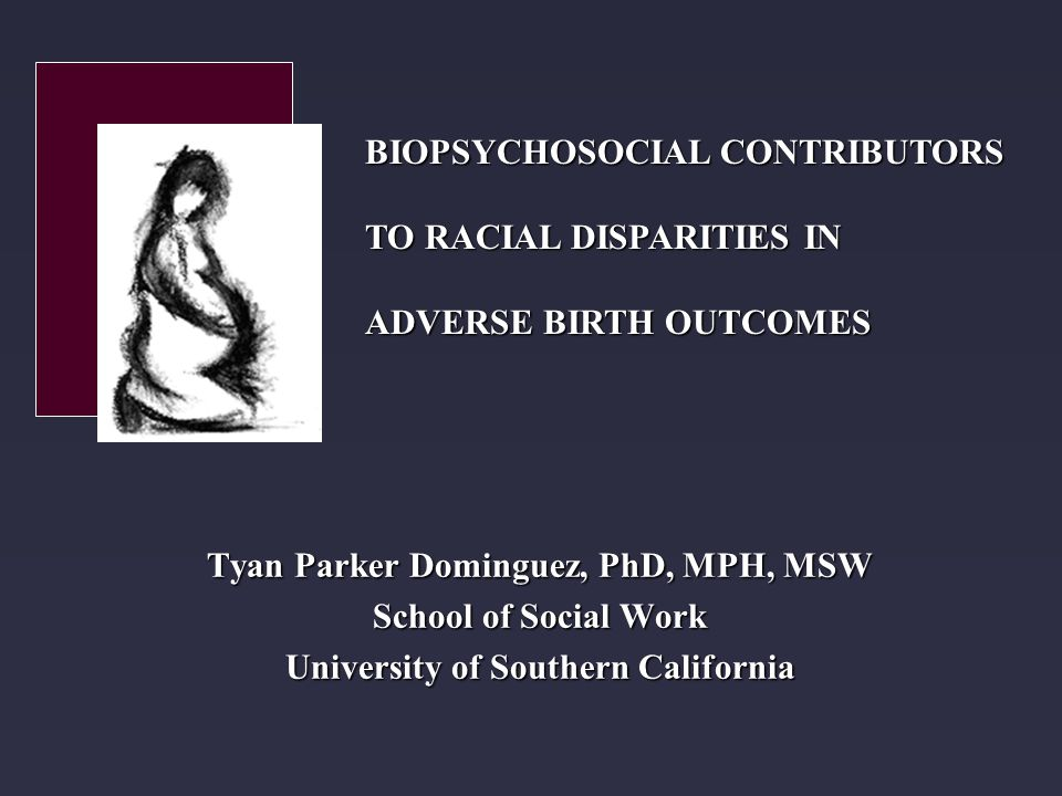 Tyan Parker Dominguez, PhD, MPH, MSW School of Social Work University of Southern California BIOPSYCHOSOCIAL CONTRIBUTORS TO RACIAL DISPARITIES IN ADVERSE BIRTH OUTCOMES
