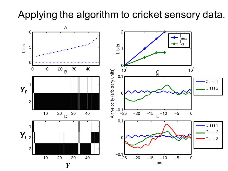 Applying the algorithm to cricket sensory data. Y YfYf YfYf Class 1 Class 2 Class 1 Class 2 Class 3