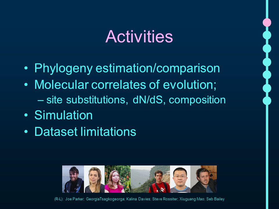Activities Phylogeny estimation/comparison Molecular correlates of evolution; –site substitutions, dN/dS, composition Simulation Dataset limitations (
