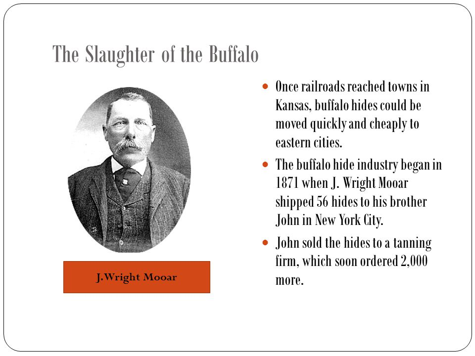 The Slaughter of the Buffalo Once railroads reached towns in Kansas, buffalo hides could be moved quickly and cheaply to eastern cities.