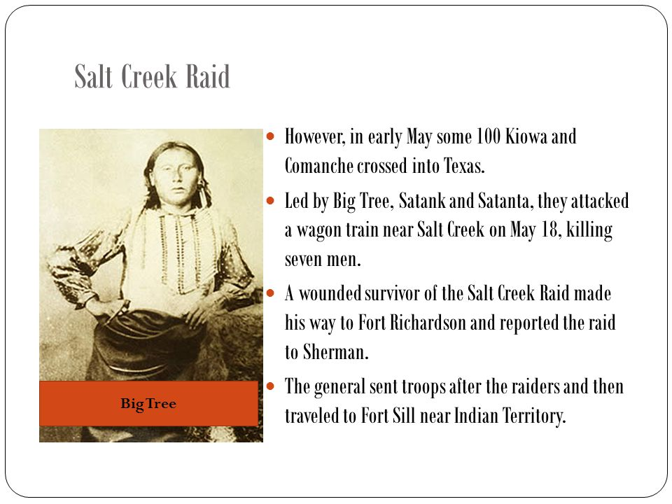 Salt Creek Raid However, in early May some 100 Kiowa and Comanche crossed into Texas.