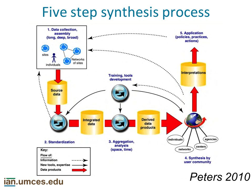 Five step synthesis process Peters 2010
