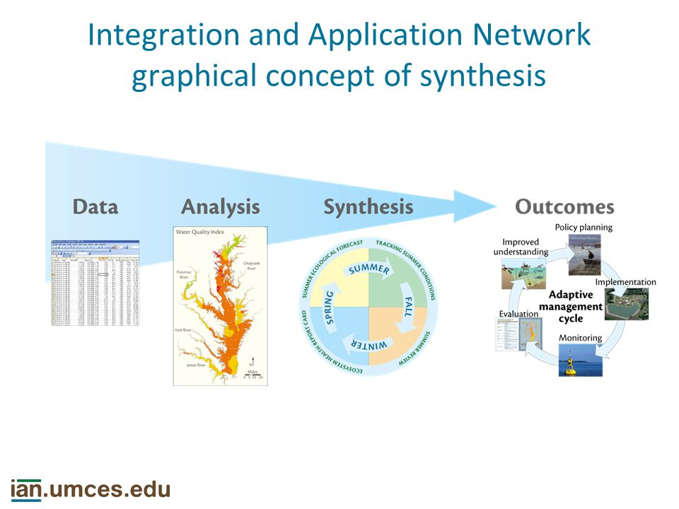 Different types of synthesis Data aggregation Methological integration Conceptual synthesis Reuse of results (e.g., meta-data analysis) Sidlauskas et al.