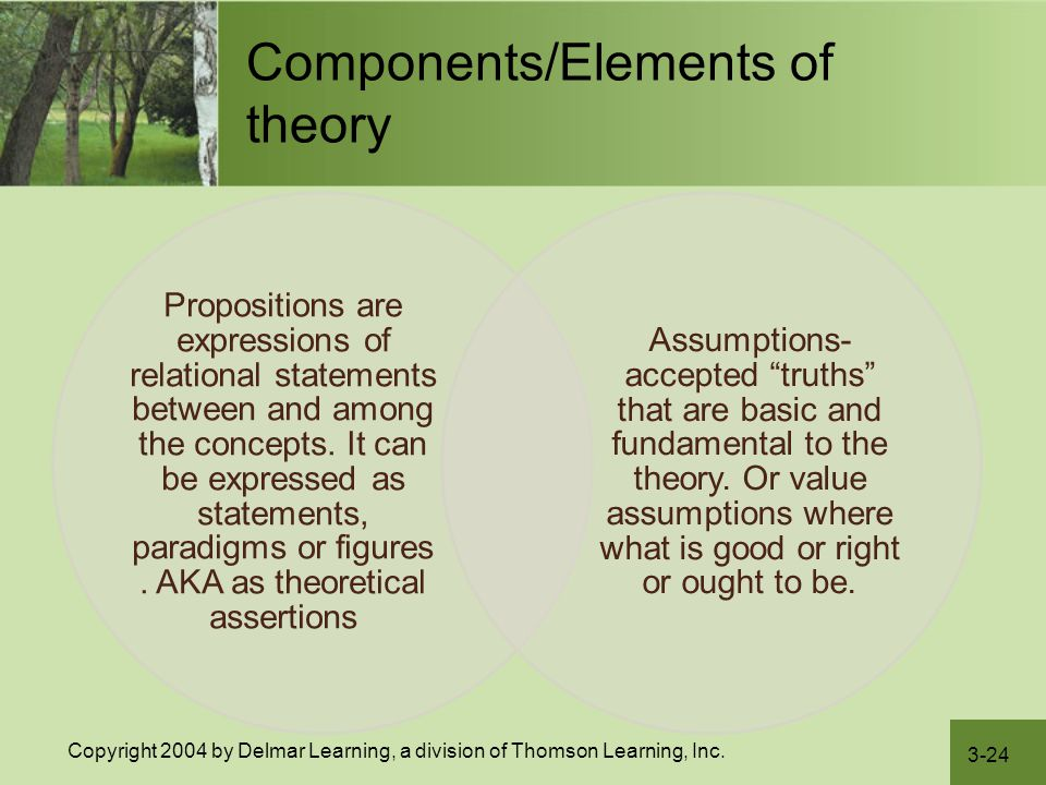 3-24 Copyright 2004 by Delmar Learning, a division of Thomson Learning, Inc. Components/Elements of theory Propositions are expressions of relational