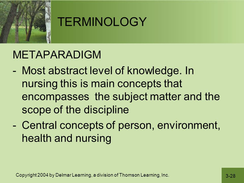 3-28 Copyright 2004 by Delmar Learning, a division of Thomson Learning, Inc. TERMINOLOGY METAPARADIGM -Most abstract level of knowledge. In nursing th