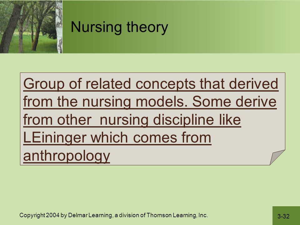 3-32 Copyright 2004 by Delmar Learning, a division of Thomson Learning, Inc. Nursing theory Group of related concepts that derived from the nursing mo