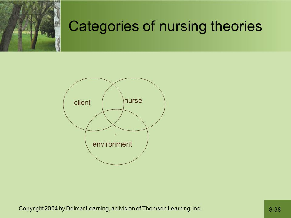 3-38 Copyright 2004 by Delmar Learning, a division of Thomson Learning, Inc. Categories of nursing theories client ` nurse environment