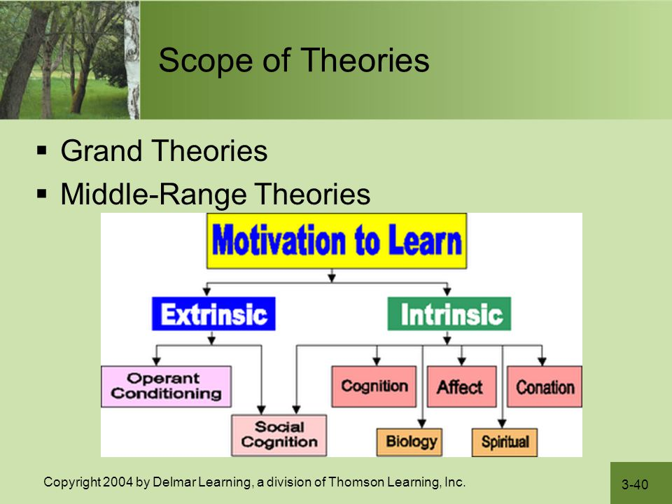 3-40 Copyright 2004 by Delmar Learning, a division of Thomson Learning, Inc. Scope of Theories  Grand Theories  Middle-Range Theories