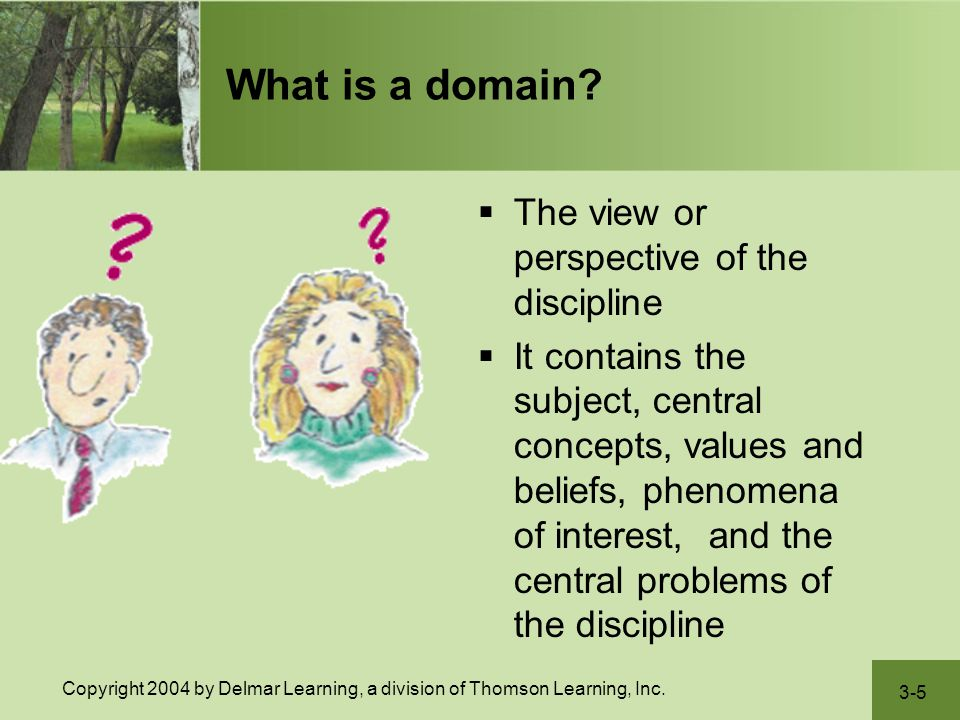 3-5 Copyright 2004 by Delmar Learning, a division of Thomson Learning, Inc. What is a domain?  The view or perspective of the discipline  It contain