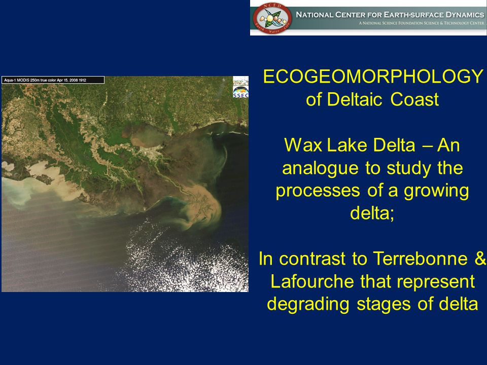 ECOGEOMORPHOLOGY of Deltaic Coast Wax Lake Delta – An analogue to study the processes of a growing delta; In contrast to Terrebonne & Lafourche that represent degrading stages of delta