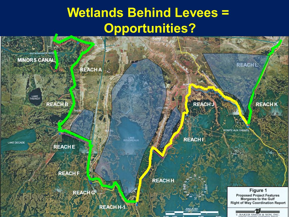 MINORS CANAL REACH A REACH B REACH E REACH F REACH H-1 REACH H REACH I REACH JREACH K REACH L REACH G Wetlands Behind Levees = Opportunities?