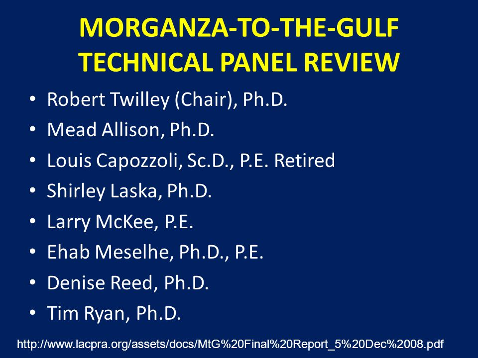 MORGANZA-TO-THE-GULF TECHNICAL PANEL REVIEW Robert Twilley (Chair), Ph.D.