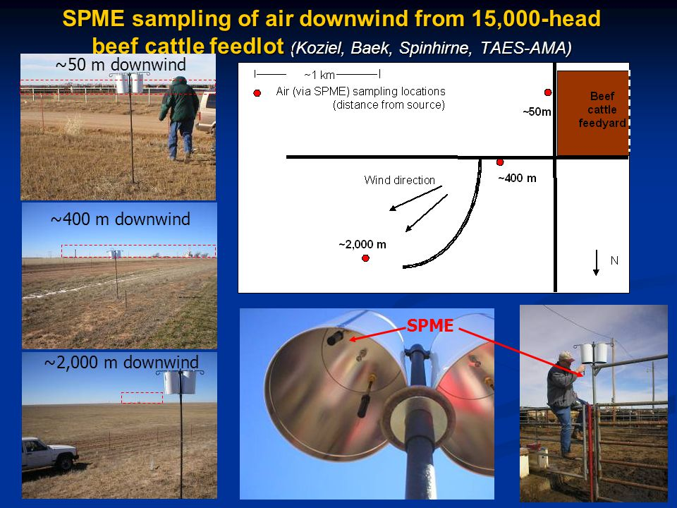 SPME sampling of air downwind from 15,000-head beef cattle feedlot (Koziel, Baek, Spinhirne, TAES-AMA) ~400 m downwind ~2,000 m downwind ~50 m downwind SPME