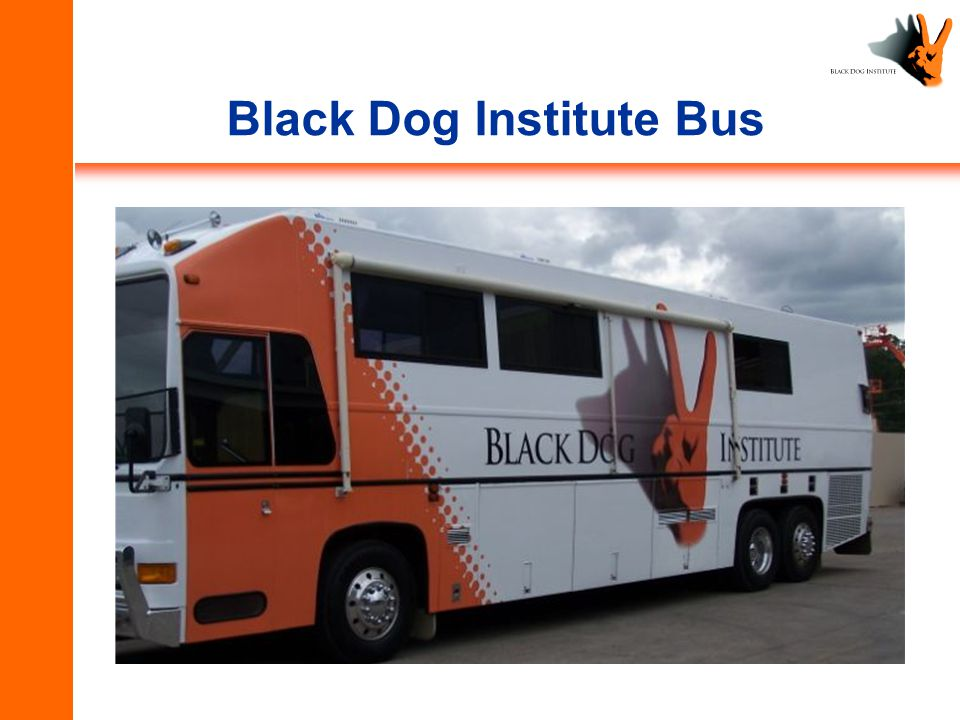 Black Dog Institute Bus