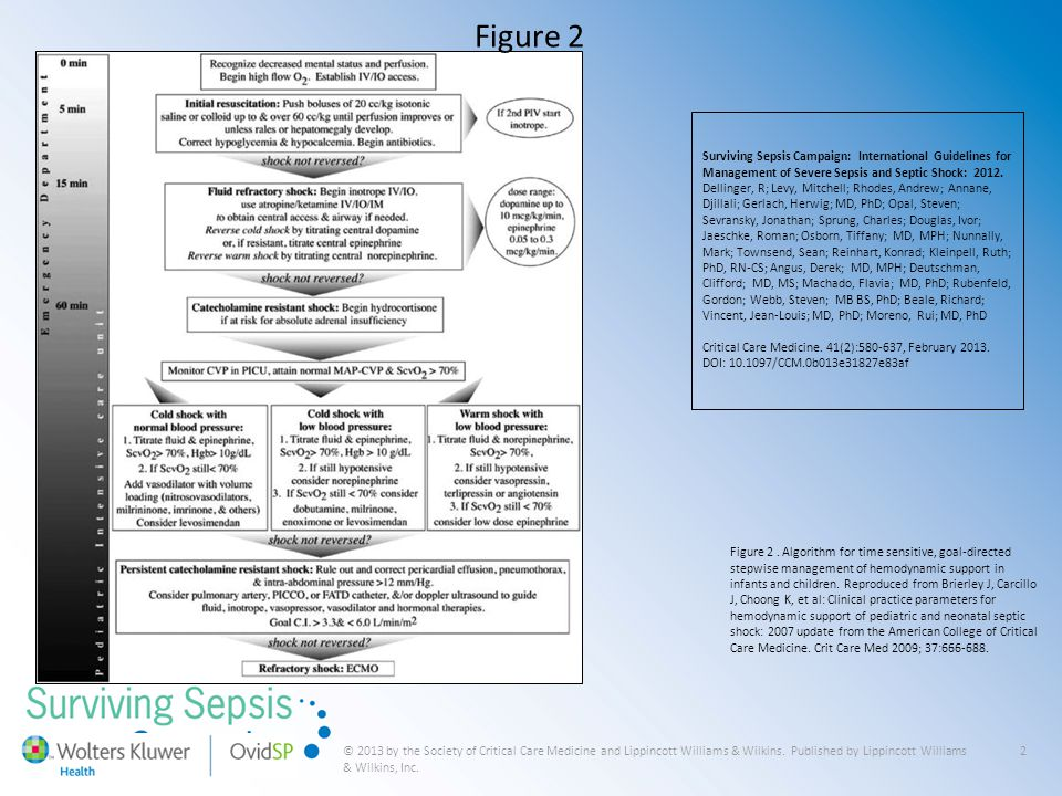 © 2013 by the Society of Critical Care Medicine and Lippincott Williams & Wilkins. Published by Lippincott Williams & Wilkins, Inc. 2 Figure 2 Survivi