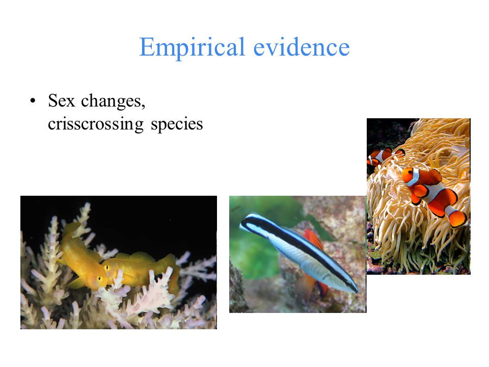 Empirical evidence Sex changes, crisscrossing species