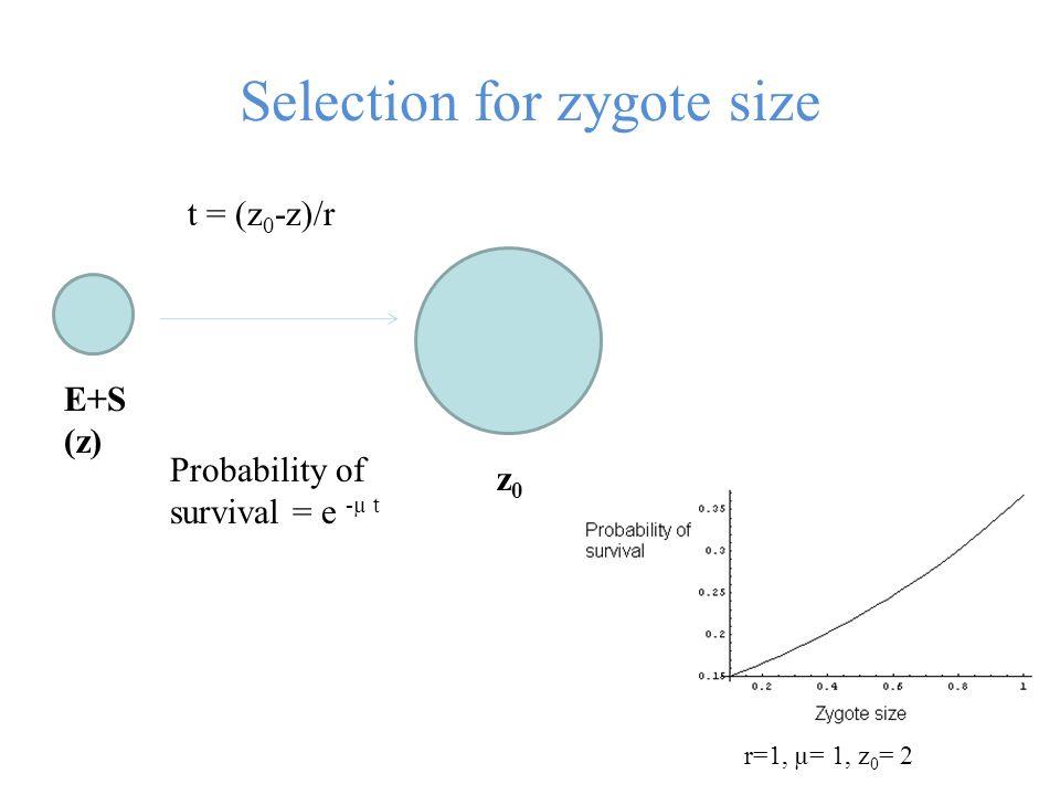 Selection for zygote size E+S (z) z0z0 t = (z 0 -z)/r Probability of survival = e -µ t r=1, µ= 1, z 0 = 2