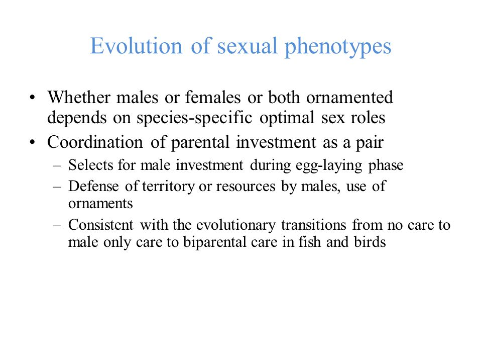 Evolution of sexual phenotypes Whether males or females or both ornamented depends on species-specific optimal sex roles Coordination of parental investment as a pair –Selects for male investment during egg-laying phase –Defense of territory or resources by males, use of ornaments –Consistent with the evolutionary transitions from no care to male only care to biparental care in fish and birds