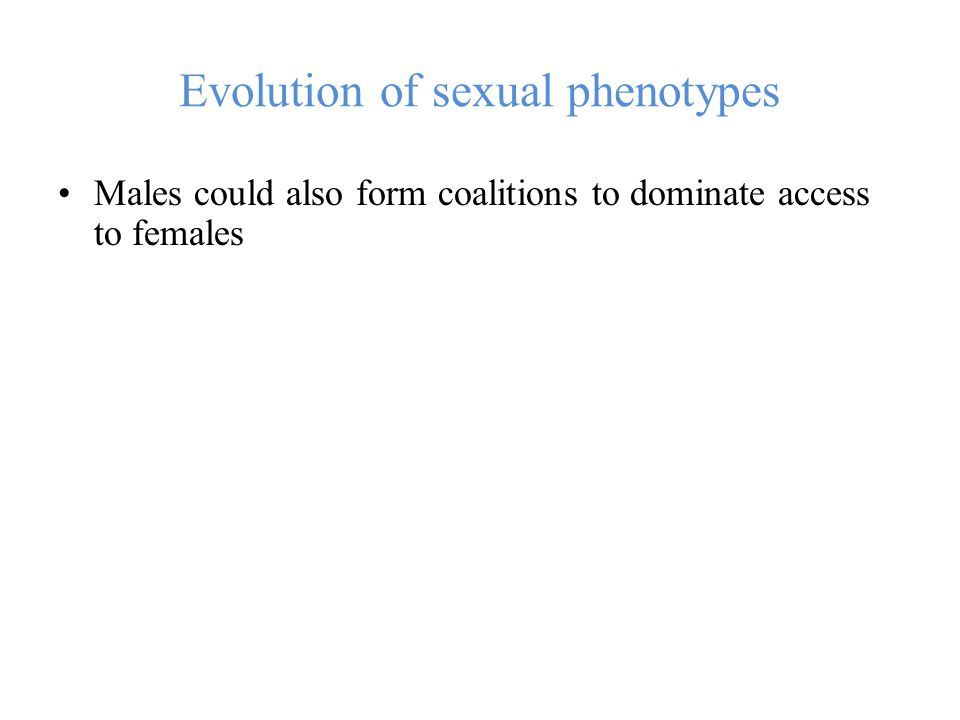 Evolution of sexual phenotypes Males could also form coalitions to dominate access to females