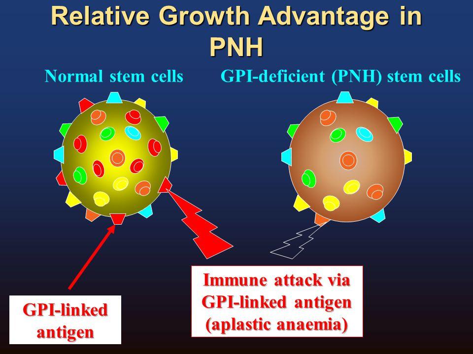 Relative Growth Advantage in PNH