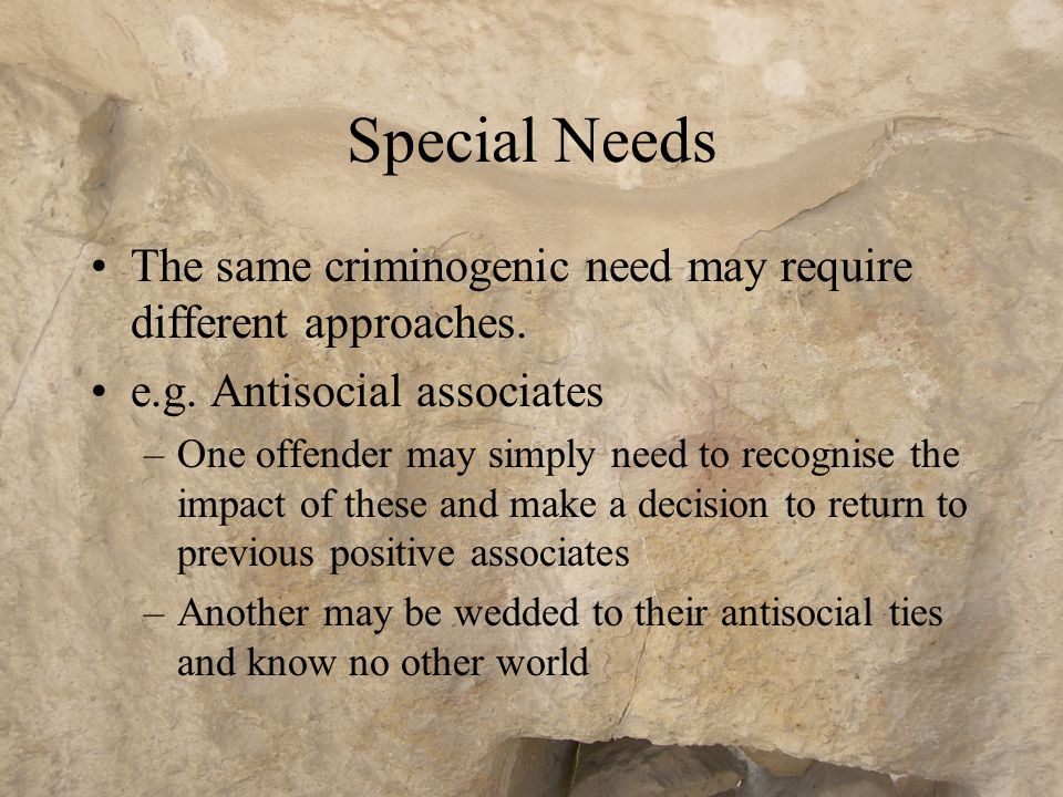 Special Needs or Individual Needs? All offenders have special needs No two are alike (although many share similarities) E.g. They may have the same cr